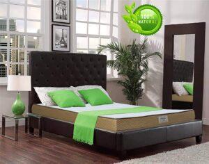 DreamZee 100% Natural Latex